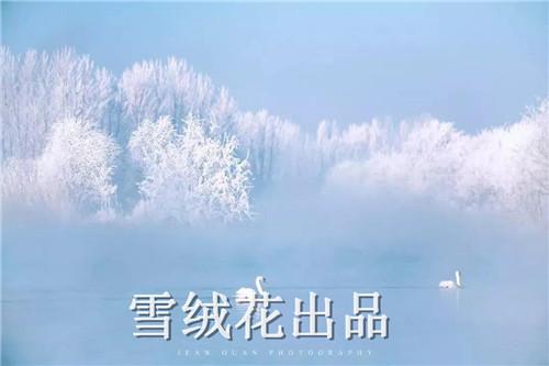 微信图片_20190510145019.jpg